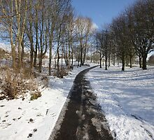 COME WALK WITH ME by leonie7