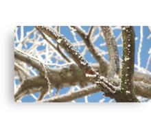 Crisp Branches Canvas Print