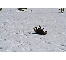Look Daddy I'm making a snow angel Photographic Print