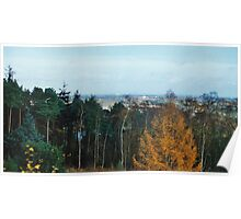View Point Of Birmingham From The Lickey Woods 3 Poster
