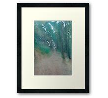 Landscape Portait Experiment Framed Print
