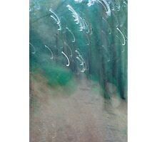 Landscape Portait Experiment Photographic Print