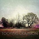 Tooting Common III by Ludwig Wagner