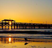 Myrtle Beach Morning by donaldhovis