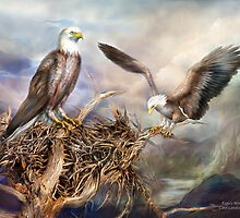 Eagle's Nest by Carol  Cavalaris