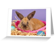 The Easter Bunny Greeting Card