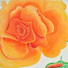 Orange Rose in Pastel Colors by Christine Chase Cooper