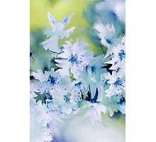 Angel Of Flowers Photographic Print