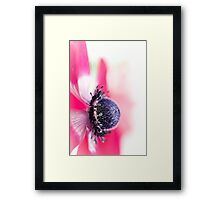 Passion... of life! Framed Print