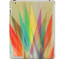 Graphic 15 iPad Case/Skin