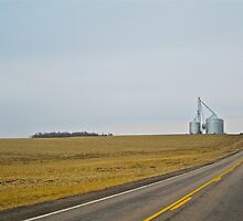 Country road, take me home by Larry Buckley