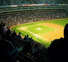 U.S. Cellular Field by biddywax