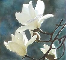 White Magnolia's One by Joan A Hamilton