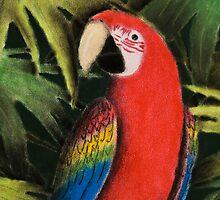 Scarlet Macaw by jkartlife
