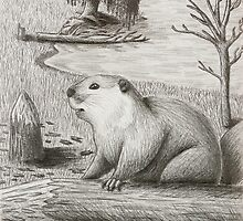 Beaver by jkartlife