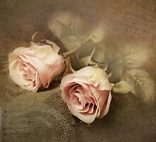 Two roses by Katharina Hilmersson