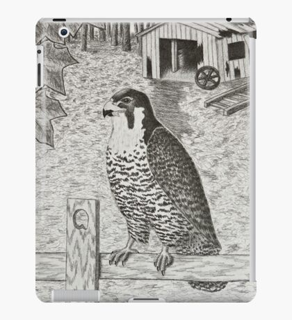 Peregrine Falcon On Fence iPad Case/Skin