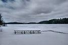 Picnic At Lake Opeongo, Ontario Canada by Allen Lucas