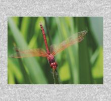 Closeup of Red Skimmer or Firecracker Dragonfly One Piece - Long Sleeve
