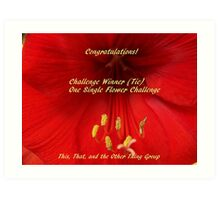 Challenge Winner - One Single Flower Art Print