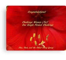 Challenge Winner - One Single Flower Canvas Print