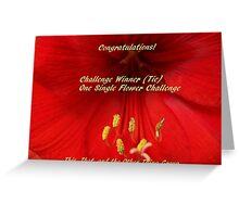 Challenge Winner - One Single Flower Greeting Card