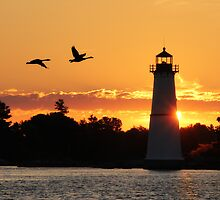Morning Silhouettes at Rock Island Lighthouse  by Lori Deiter