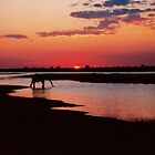 Sundowners in Chobe ! by Dean Cunningham
