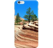 Zion iPhone Case/Skin