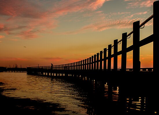 walkway bridge by ketut suwitra