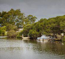 Denmark River, Western Australia #5 by Elaine Teague
