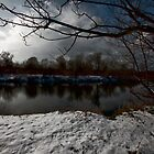 THE LAST DAYS OF WINTER  by leonie7
