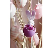 Bunny Easter  Photographic Print