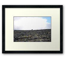 Lonely Reindeer Framed Print