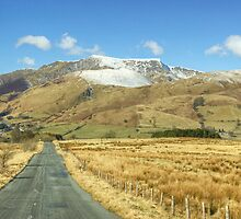 The Road To Blencathra by Jamie  Green