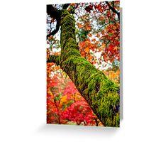 Tree branch Greeting Card