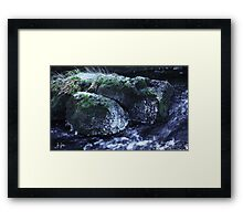 Iced Rock Framed Print