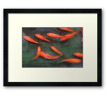 Feng Shui Fish Framed Print