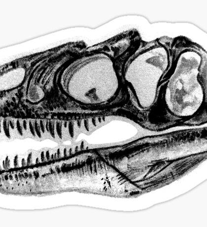 Allosaurus Skull Dino Dinosaur Sticker Paleo Sticker
