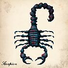 The Scorpion by Downsea