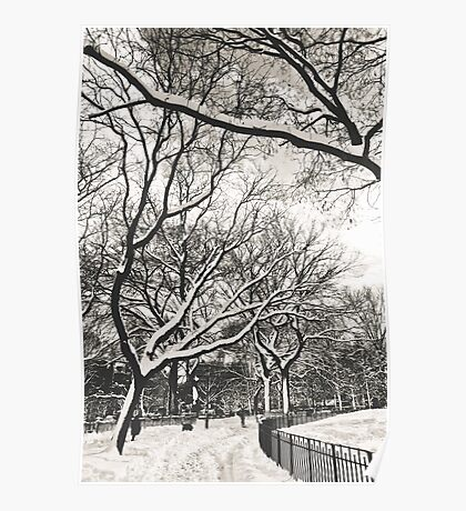 Snow in Tompkins Park Poster