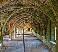 Cellarium Fountains Abbey  by InstituteFUF