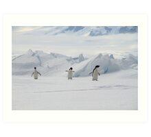 Penguin Parade Art Print