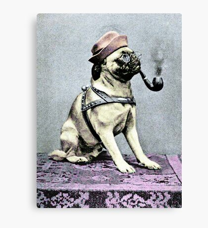 Pug Dog with Hat and Pipe Canvas Print