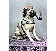 Pug Dog with Hat and Pipe Photographic Print