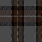 00805 West Coast Woven Mills Fashion Tartan #1163 Fabric Print Iphone Case by Detnecs2013