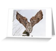 To his kingdom he flies Greeting Card