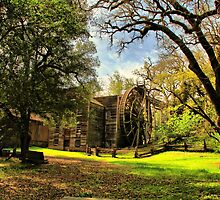 The Old Bale Grist Mill by Barbara  Brown