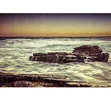 Petrels Textures Photographic Print