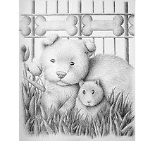 Dog And Hamster Photographic Print